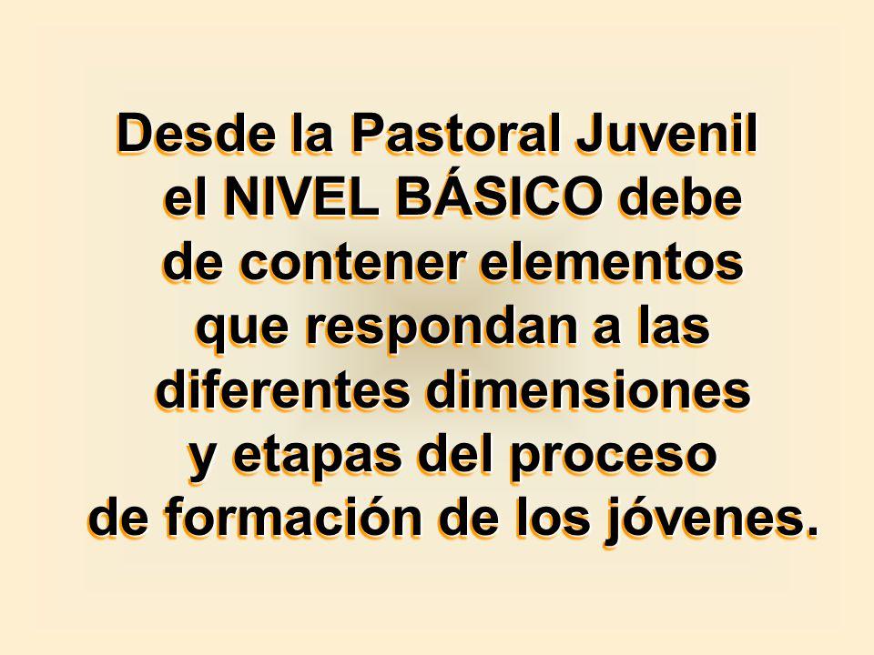 Desde la Pastoral Juvenil el NIVEL BÁSICO debe de contener elementos que respondan a las diferentes dimensiones y etapas del proceso de formación de l