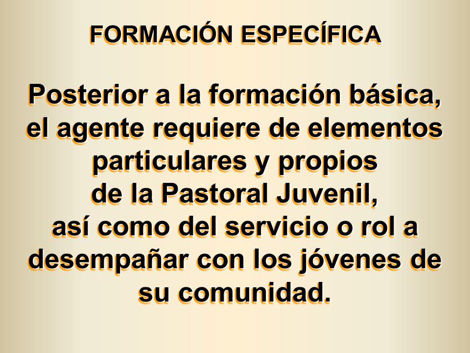 FORMACIÓN ESPECÍFICA FORMACIÓN ESPECÍFICA Posterior a la formación básica, el agente requiere de elementos particulares y propios de la Pastoral Juven