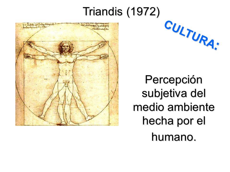 Percepción subjetiva del medio ambiente hecha por el humano. Triandis (1972) CULTURA :