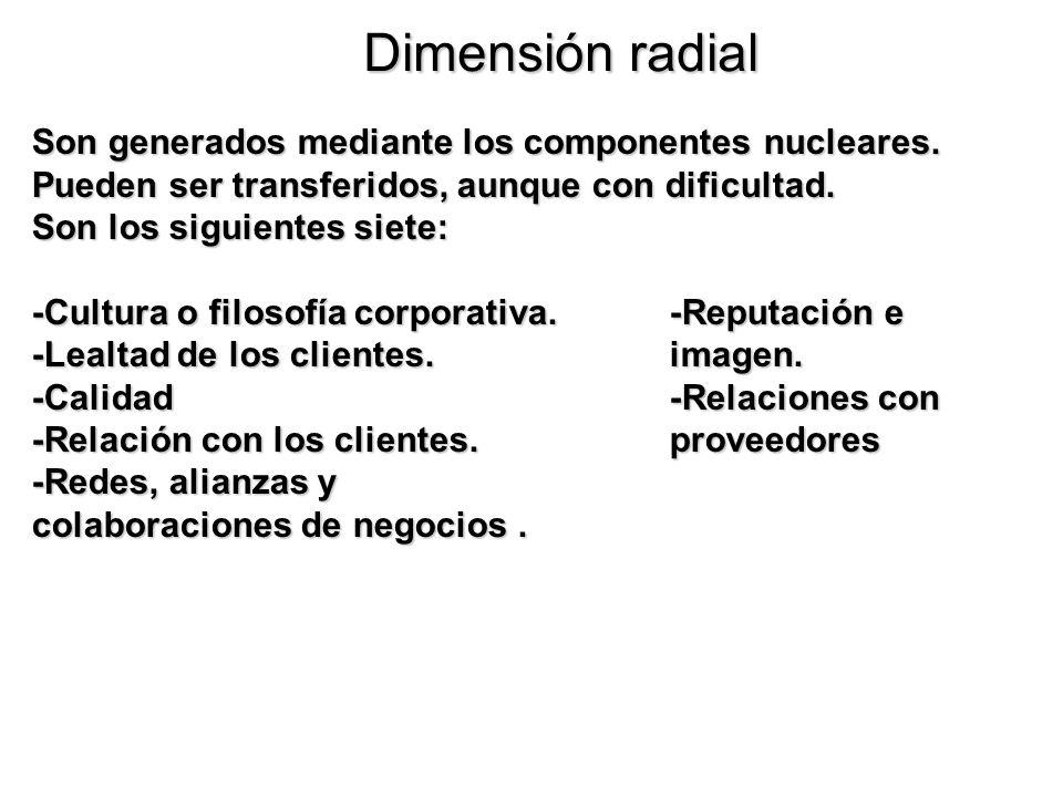 Dimensión radial Son generados mediante los componentes nucleares. Pueden ser transferidos, aunque con dificultad. Son los siguientes siete: -Cultura