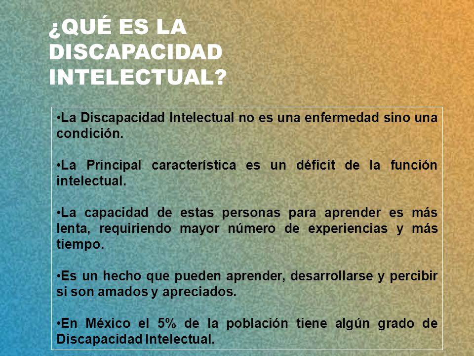 La Discapacidad Intelectual no es una enfermedad sino una condición.