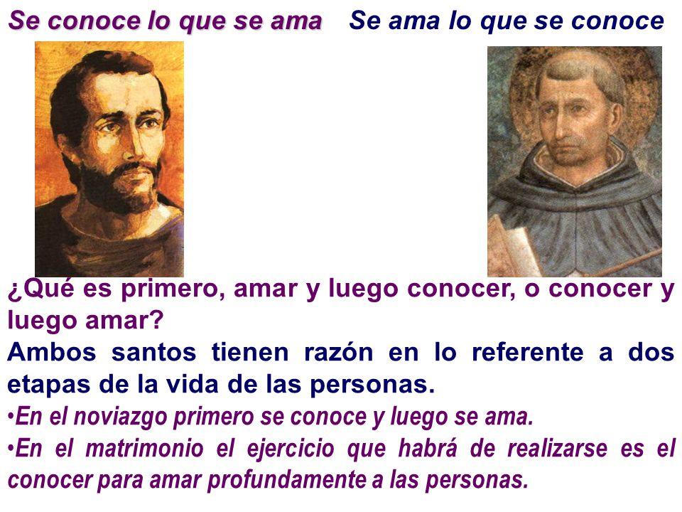¿Qué es primero, amar y luego conocer, o conocer y luego amar? Ambos santos tienen razón en lo referente a dos etapas de la vida de las personas. En e