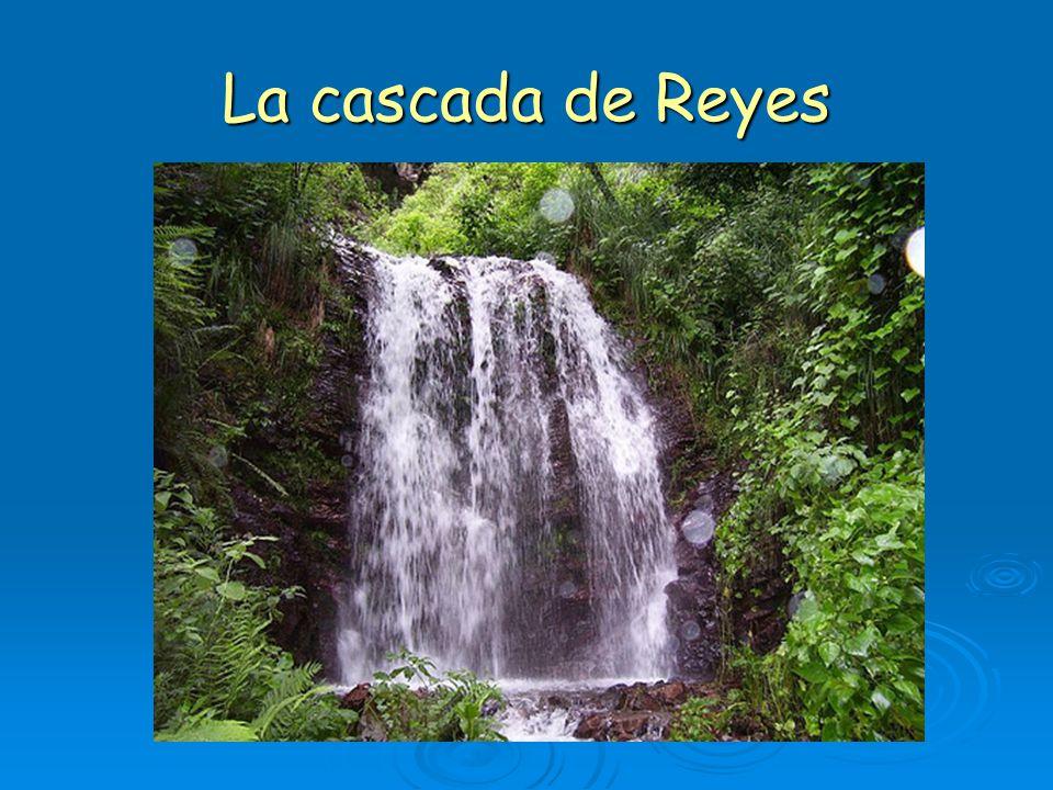 La cascada de Reyes