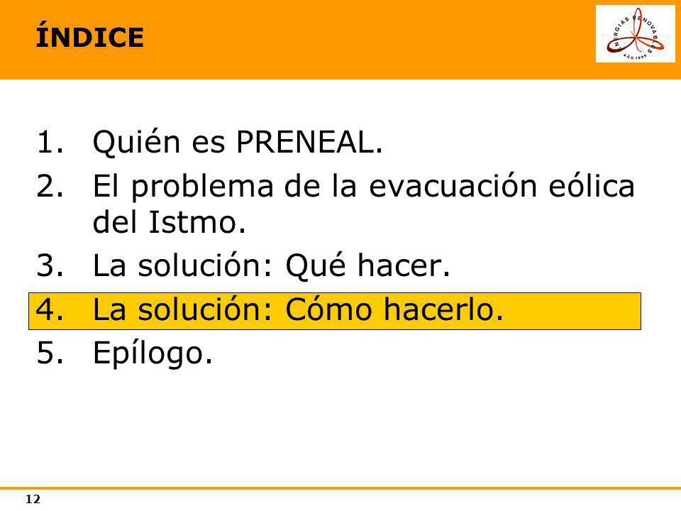 12 ÍNDICE 1.Quién es PRENEAL. 2.El problema de la evacuación eólica del Istmo. 3.La solución: Qué hacer. 4.La solución: Cómo hacerlo. 5.Epílogo.
