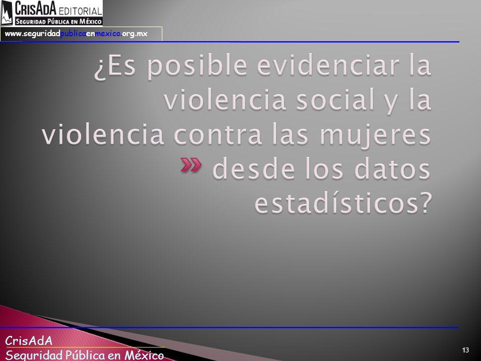 CrisAdA Seguridad Pública en México www.seguridadpublicaenmexico.org.mx 13