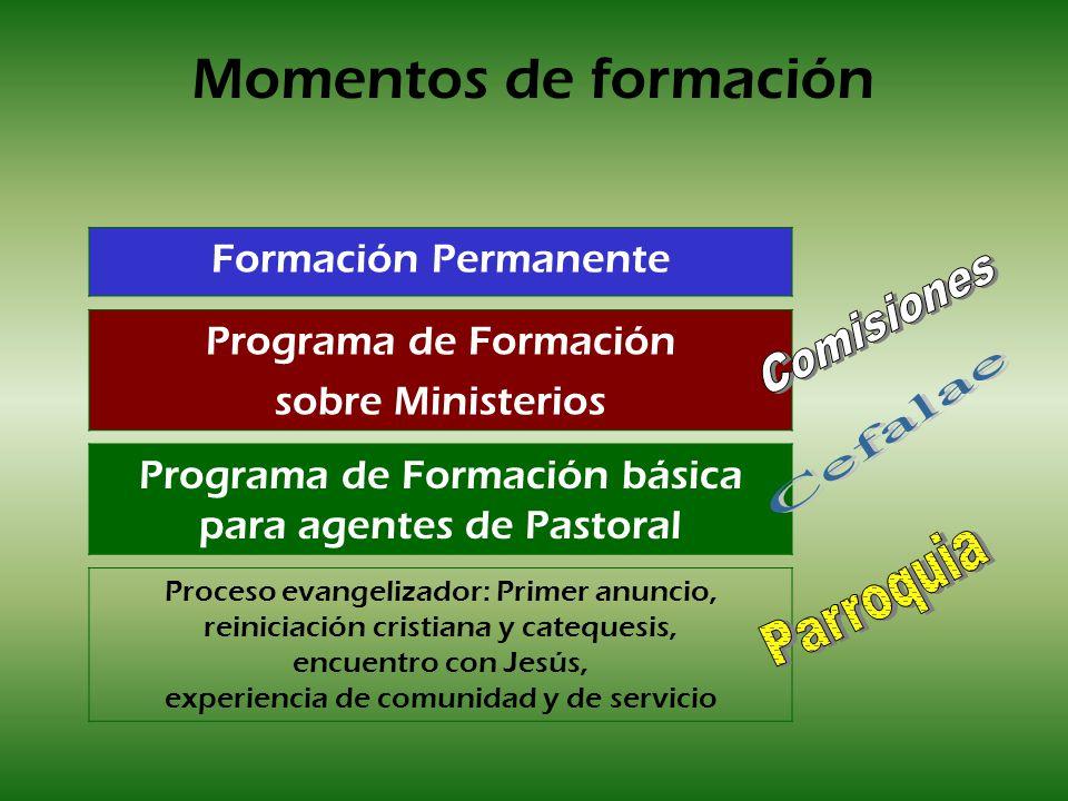 Momentos de formación Proceso evangelizador: Primer anuncio, reiniciación cristiana y catequesis, encuentro con Jesús, experiencia de comunidad y de s