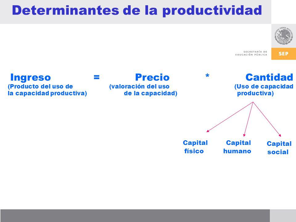 Determinantes de la productividad Ingreso = Precio * Cantidad (Producto del uso de (valoración del uso (Uso de capacidad la capacidad productiva) de la capacidad) productiva) Capital físico Capital humano Capital social