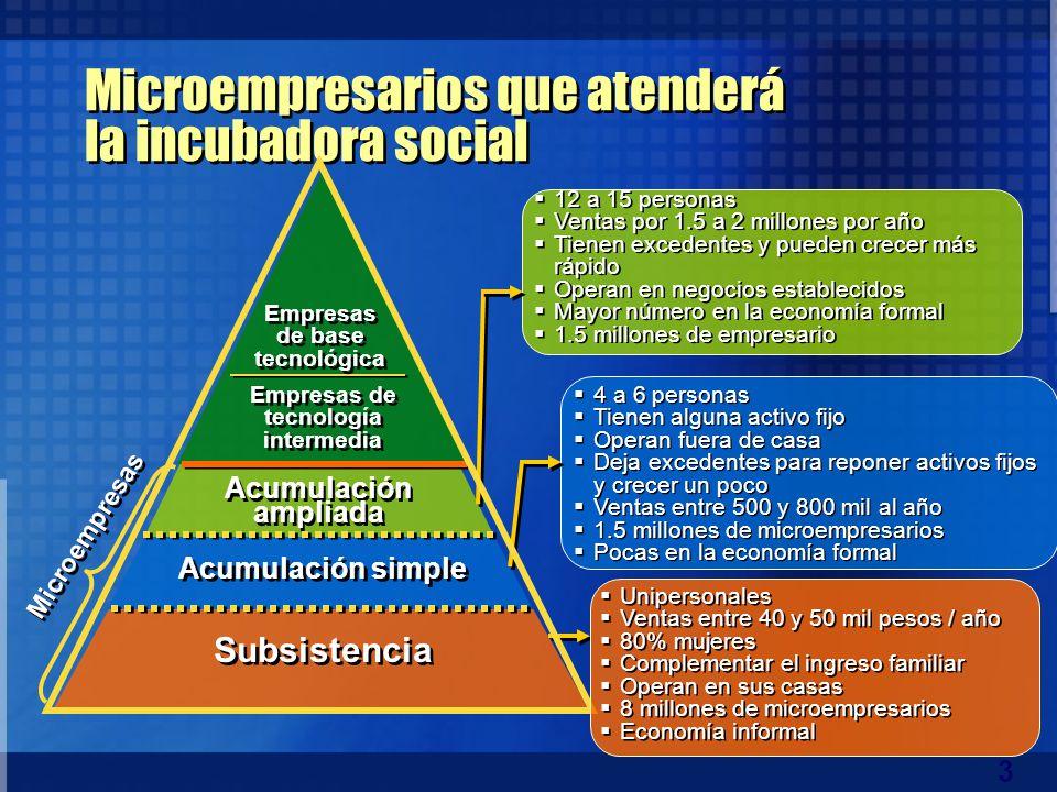 3 Microempresarios que atenderá la incubadora social Empresas de tecnología intermedia 4 a 6 personas Tienen alguna activo fijo Operan fuera de casa D