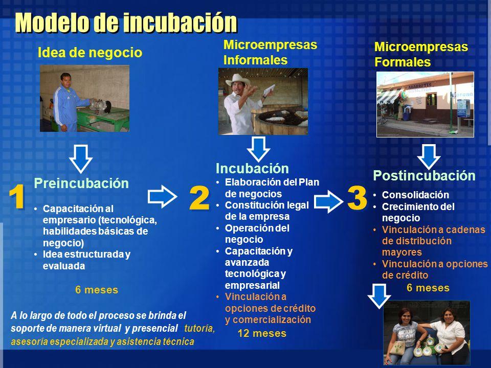 5 Modelo de incubación Preincubación Capacitación al empresario (tecnológica, habilidades básicas de negocio) Idea estructurada y evaluada 6 meses Inc