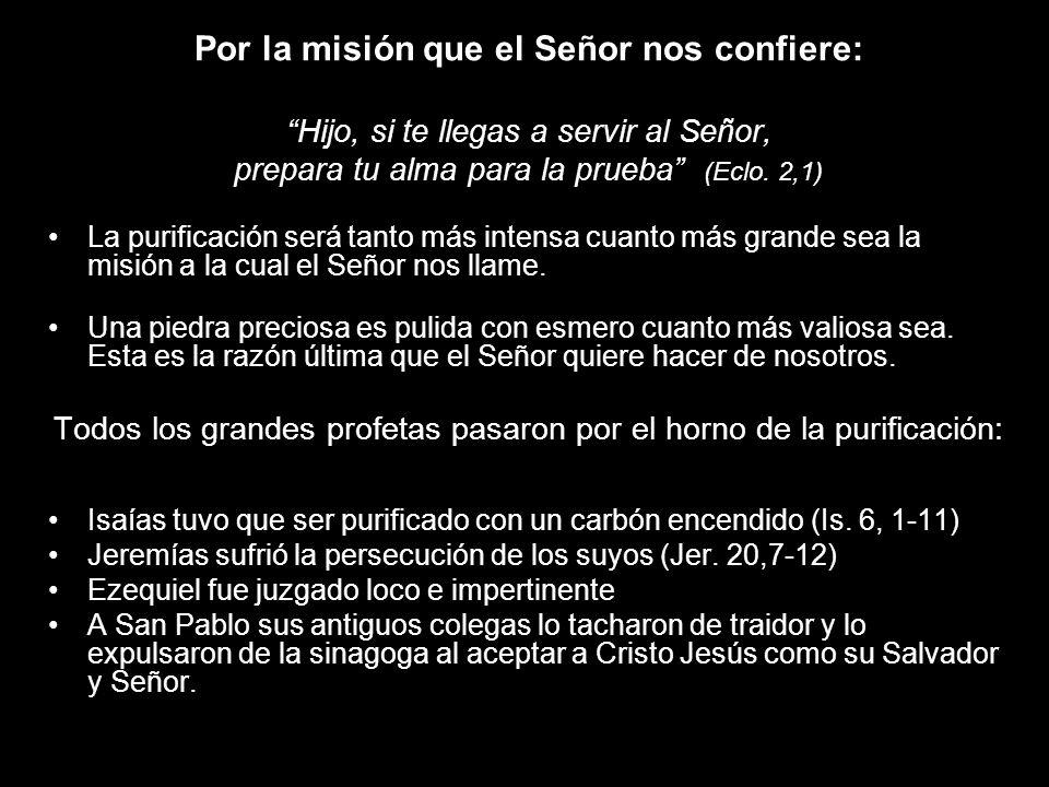Por la misión que el Señor nos confiere: Hijo, si te llegas a servir al Señor, prepara tu alma para la prueba (Eclo. 2,1) La purificación será tanto m