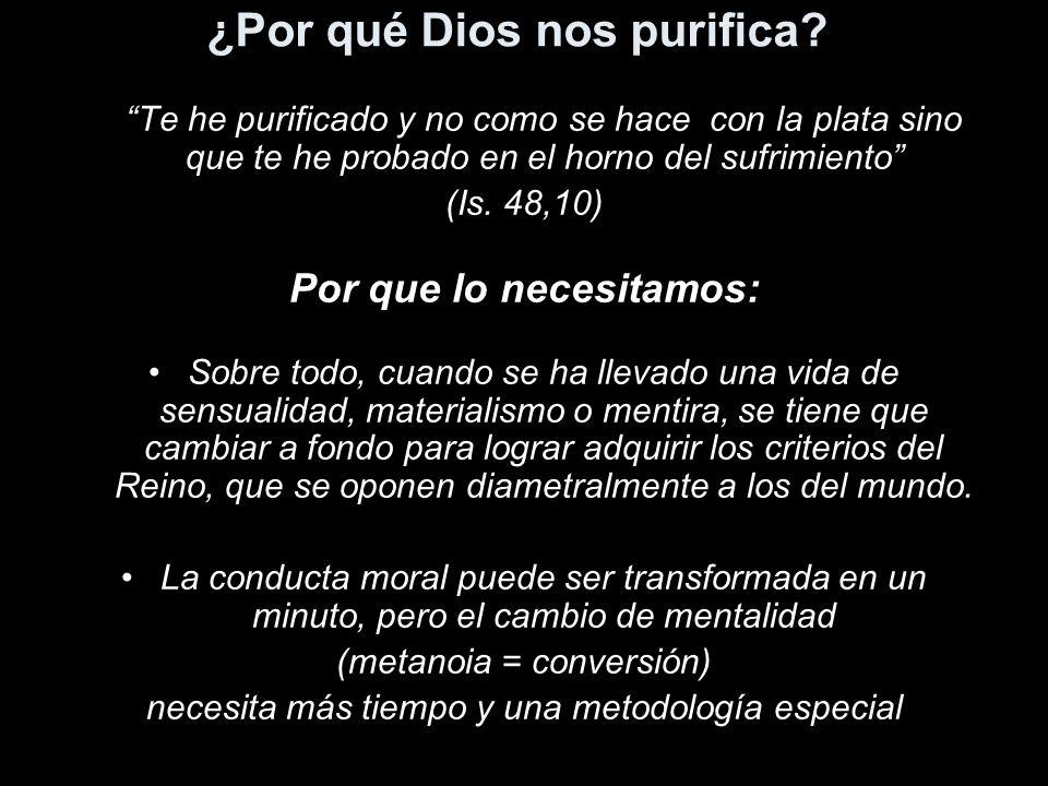 ¿Por qué Dios nos purifica? Te he purificado y no como se hace con la plata sino que te he probado en el horno del sufrimiento (Is. 48,10) Por que lo