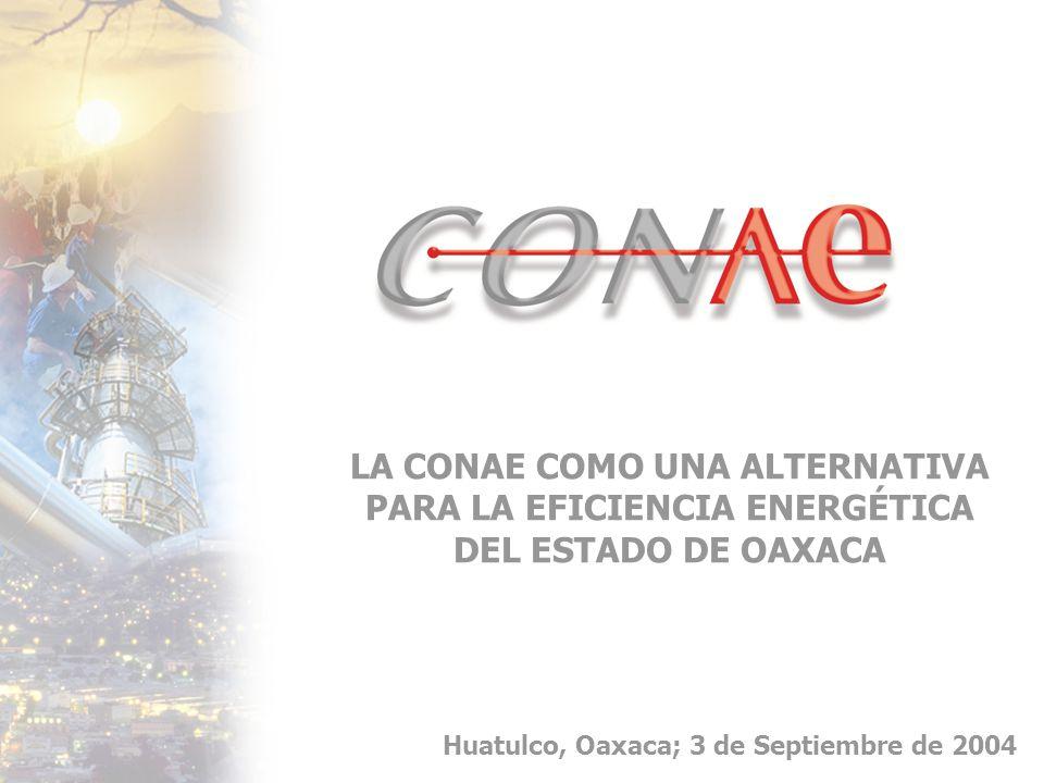 LA CONAE COMO UNA ALTERNATIVA PARA LA EFICIENCIA ENERGÉTICA DEL ESTADO DE OAXACA Huatulco, Oaxaca; 3 de Septiembre de 2004