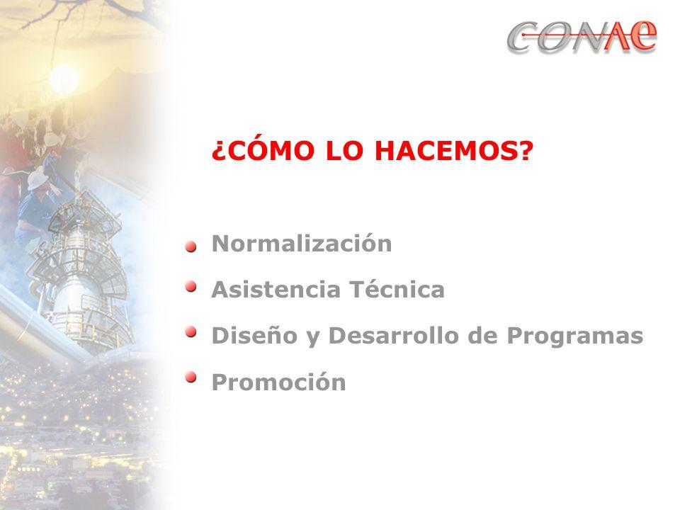 ¿CÓMO LO HACEMOS Normalización Asistencia Técnica Diseño y Desarrollo de Programas Promoción