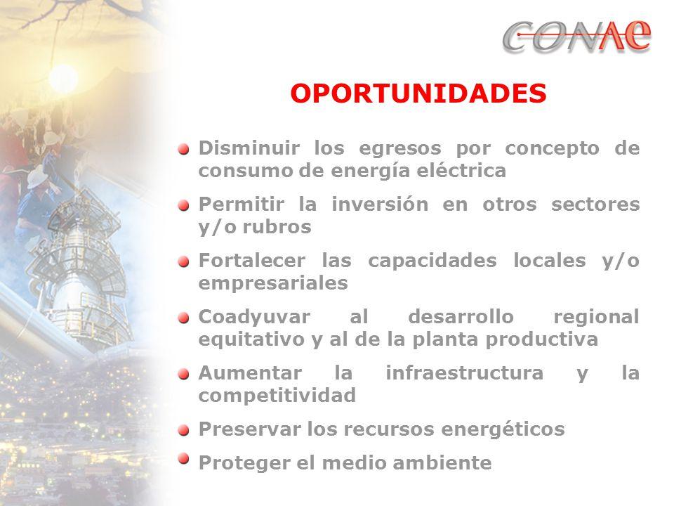 OPORTUNIDADES Disminuir los egresos por concepto de consumo de energía eléctrica Permitir la inversión en otros sectores y/o rubros Fortalecer las capacidades locales y/o empresariales Coadyuvar al desarrollo regional equitativo y al de la planta productiva Aumentar la infraestructura y la competitividad Preservar los recursos energéticos Proteger el medio ambiente