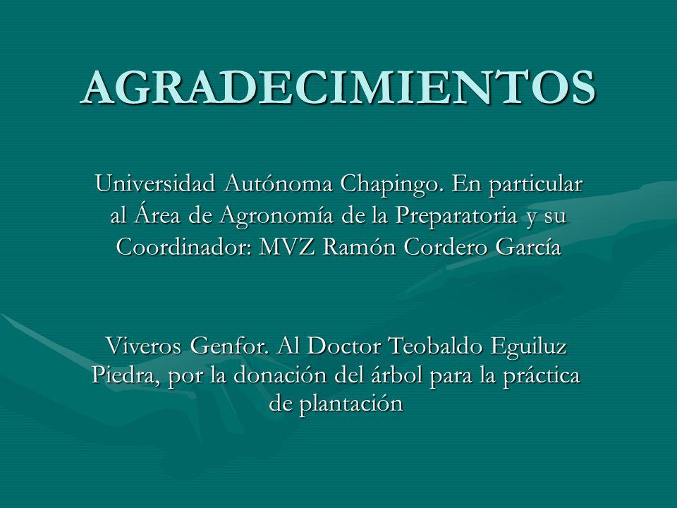 AGRADECIMIENTOS Universidad Autónoma Chapingo. En particular al Área de Agronomía de la Preparatoria y su Coordinador: MVZ Ramón Cordero García Vivero