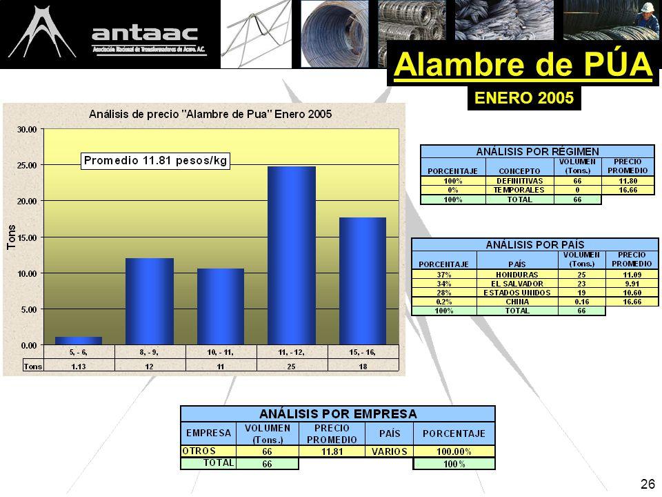 26 Alambre de PÚA ENERO 2005