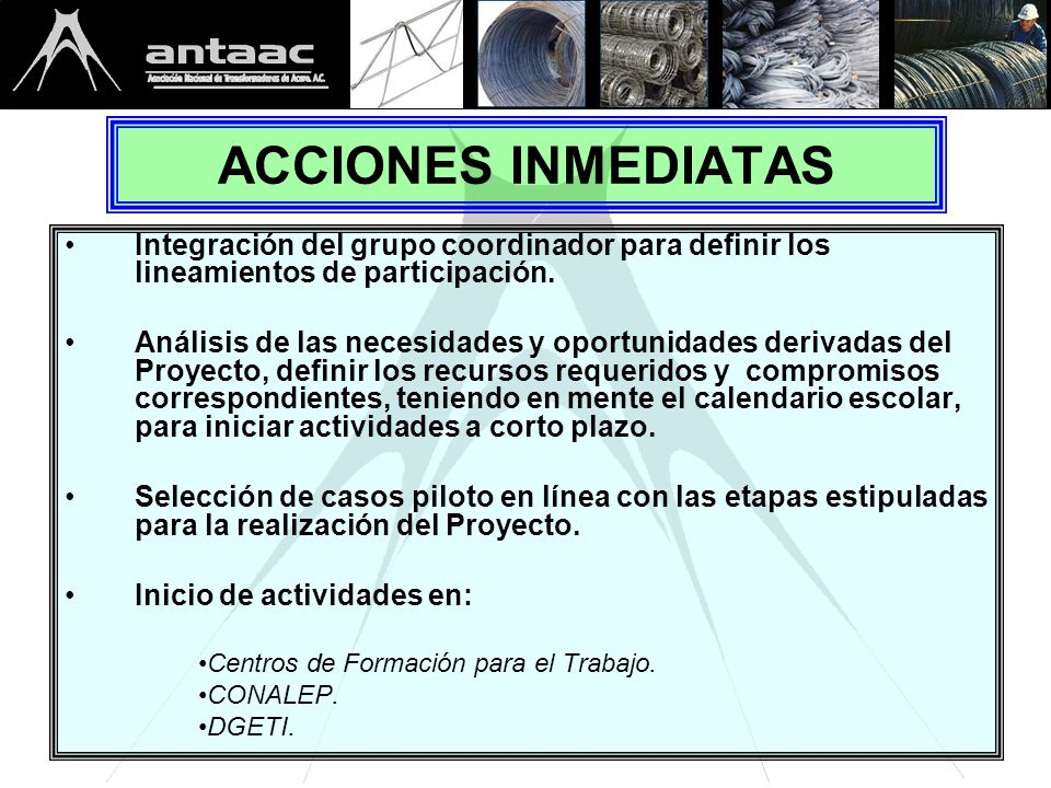 ACCIONES INMEDIATAS Integración del grupo coordinador para definir los lineamientos de participación.