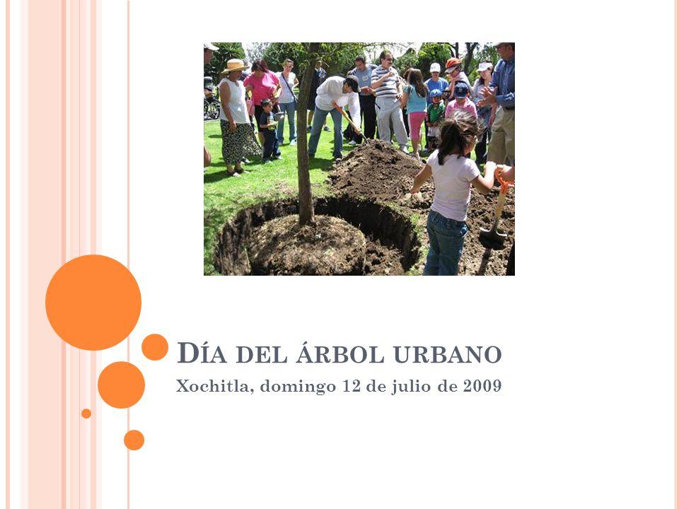D ÍA DEL ÁRBOL URBANO Xochitla, domingo 12 de julio de 2009
