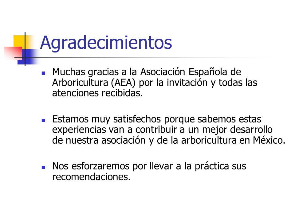 Agradecimientos Muchas gracias a la Asociación Española de Arboricultura (AEA) por la invitación y todas las atenciones recibidas.
