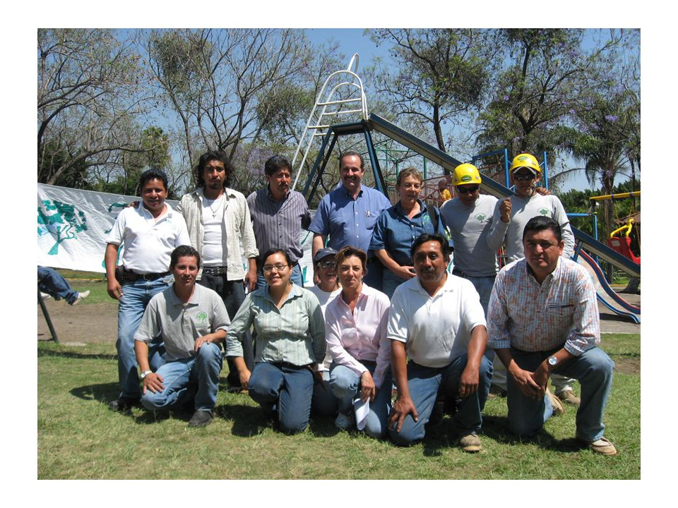LA ASOCIACI Ó N MEXICANA DE ARBORICULTURA, A.C.