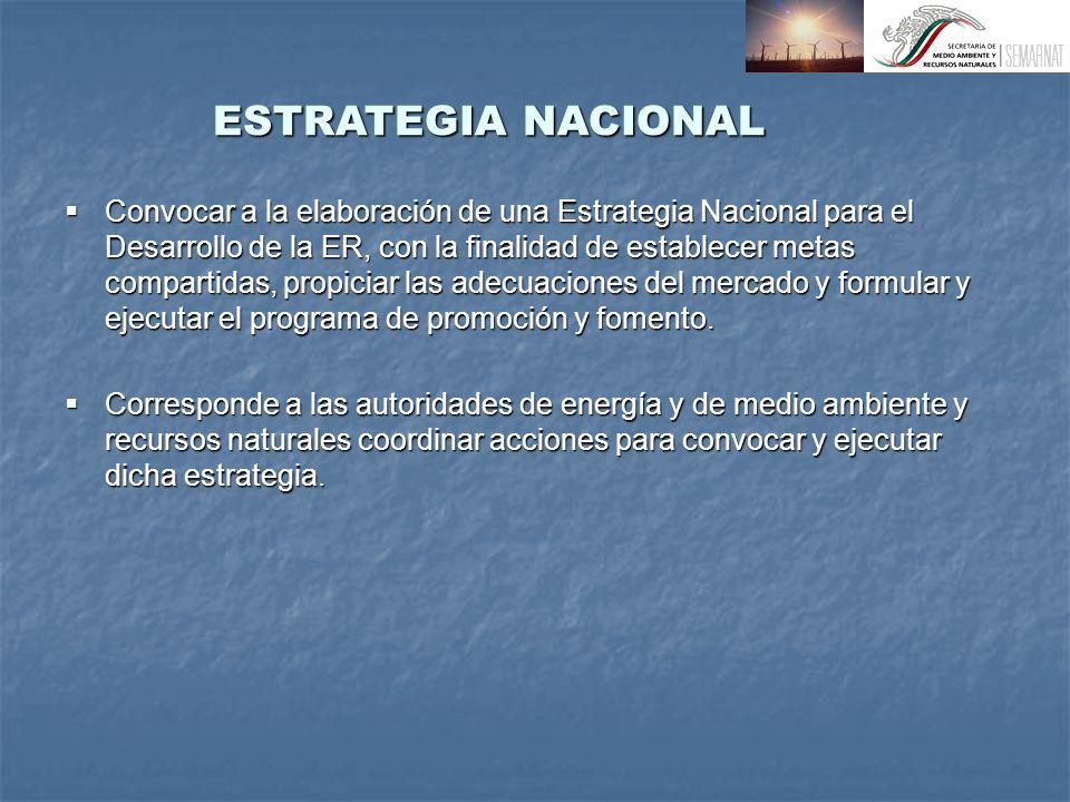 ESTRATEGIA NACIONAL Convocar a la elaboración de una Estrategia Nacional para el Desarrollo de la ER, con la finalidad de establecer metas compartidas, propiciar las adecuaciones del mercado y formular y ejecutar el programa de promoción y fomento.
