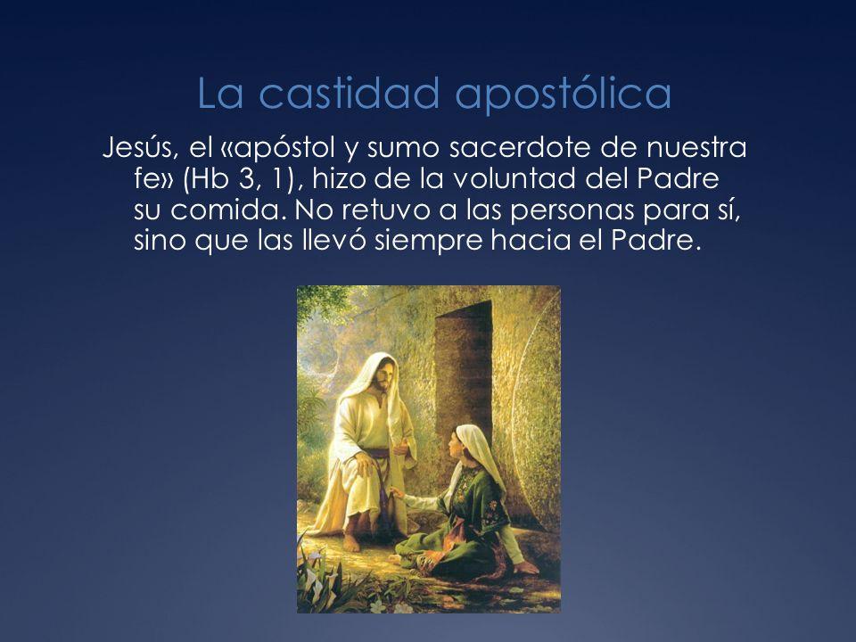 La castidad apostólica Jesús, el «apóstol y sumo sacerdote de nuestra fe» (Hb 3, 1), hizo de la voluntad del Padre su comida.