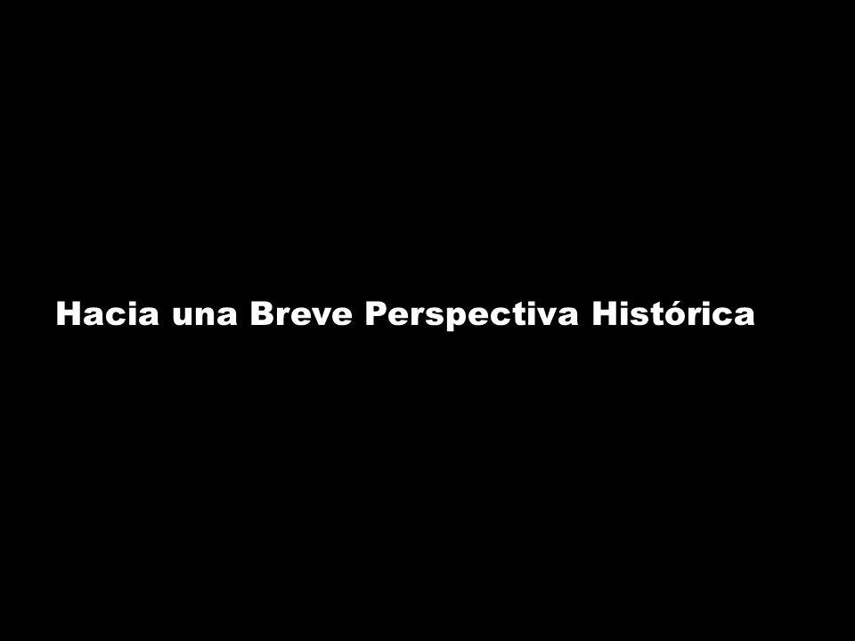 Hacia una Breve Perspectiva Histórica