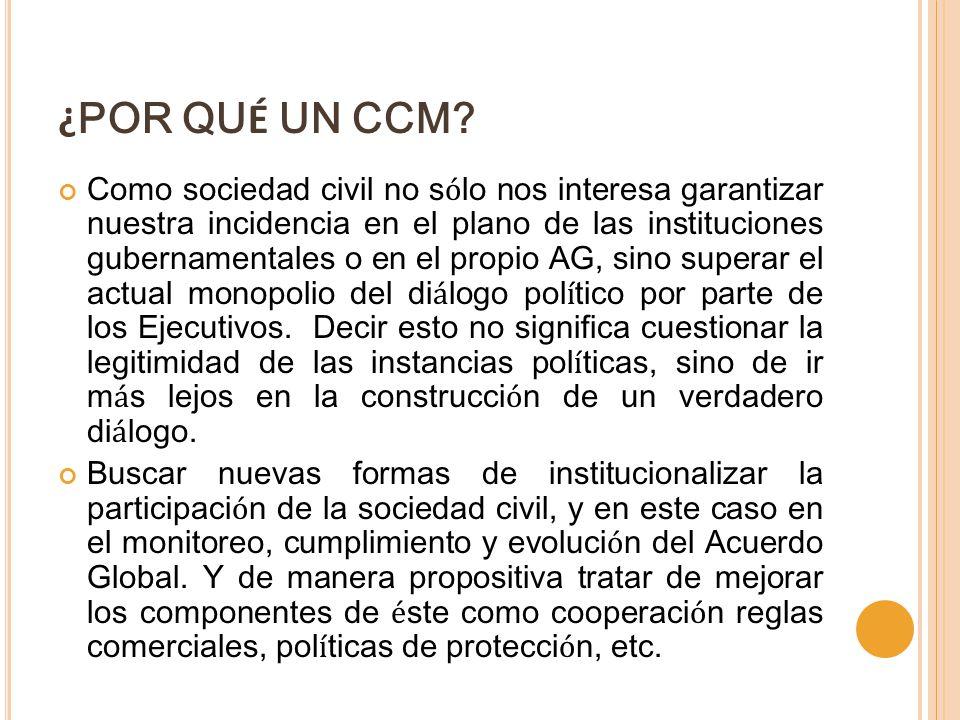 ¿ POR QU É UN CCM? Como sociedad civil no s ó lo nos interesa garantizar nuestra incidencia en el plano de las instituciones gubernamentales o en el p