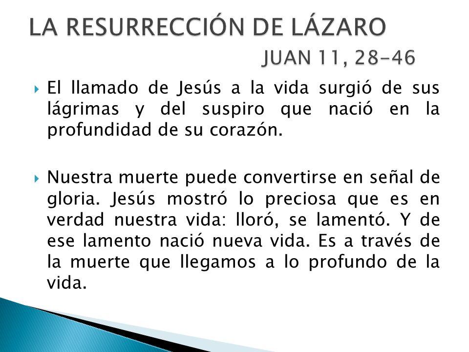 El llamado de Jesús a la vida surgió de sus lágrimas y del suspiro que nació en la profundidad de su corazón.