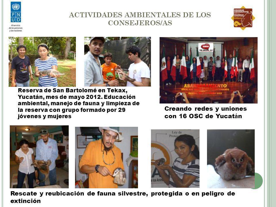 ACTIVIDADES AMBIENTALES DE LOS CONSEJEROS/AS Reserva de San Bartolomé en Tekax, Yucatán, mes de mayo 2012. Educación ambiental, manejo de fauna y limp