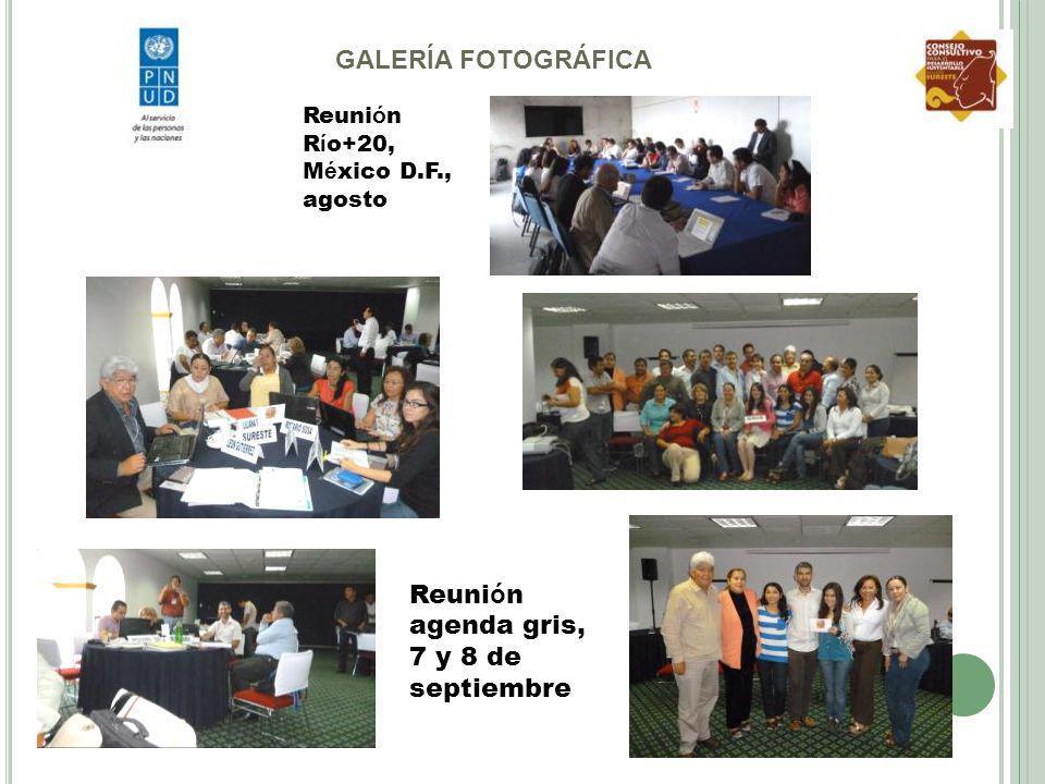 Reuni ó n R í o+20, M é xico D.F., agosto Reuni ó n agenda gris, 7 y 8 de septiembre GALERÍA FOTOGRÁFICA