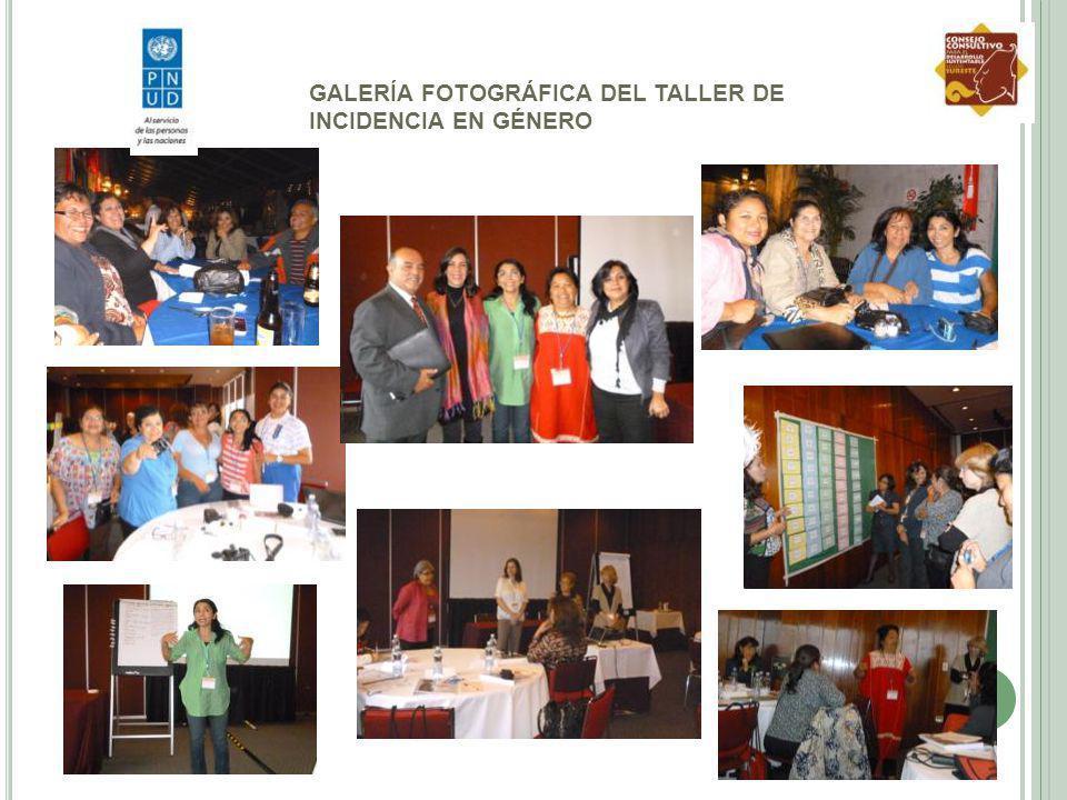 GALERÍA FOTOGRÁFICA DEL TALLER DE INCIDENCIA EN GÉNERO
