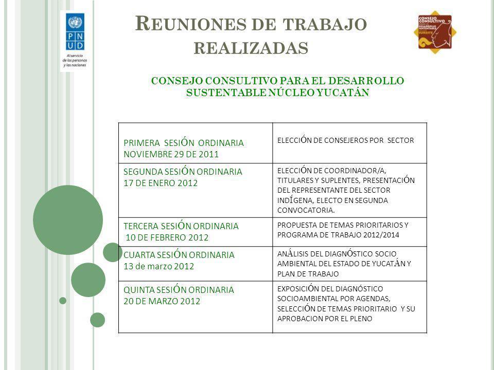 R EUNIONES DE TRABAJO REALIZADAS CONSEJO CONSULTIVO PARA EL DESARROLLO SUSTENTABLE NÚCLEO YUCATÁN PRIMERA SESI Ó N ORDINARIA NOVIEMBRE 29 DE 2011 ELEC