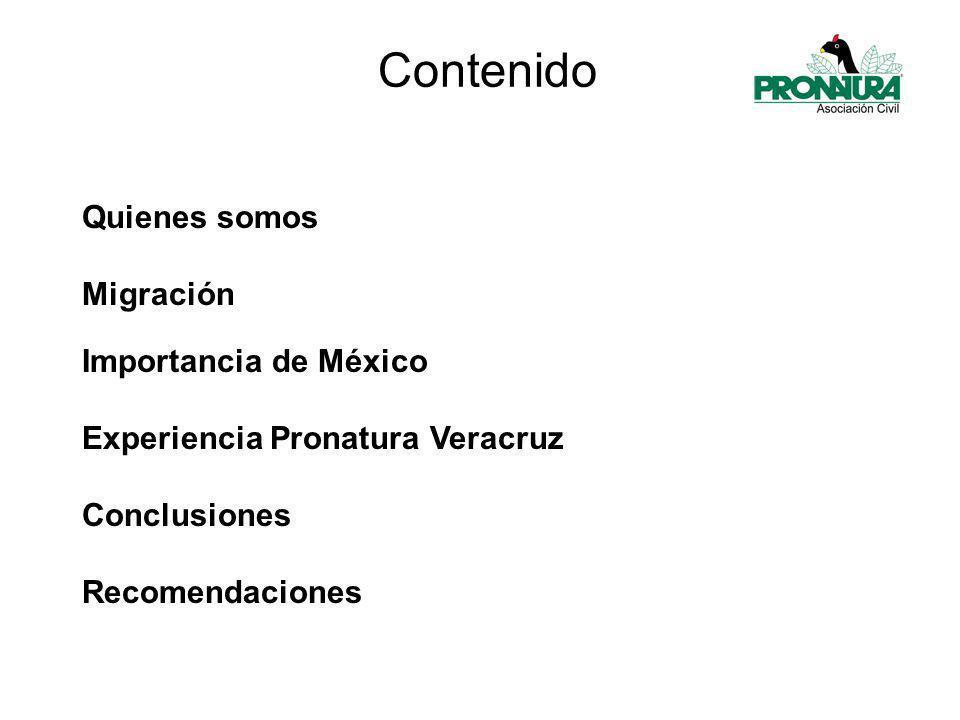 Quienes somos Migración Importancia de México Experiencia Pronatura Veracruz Conclusiones Recomendaciones Contenido