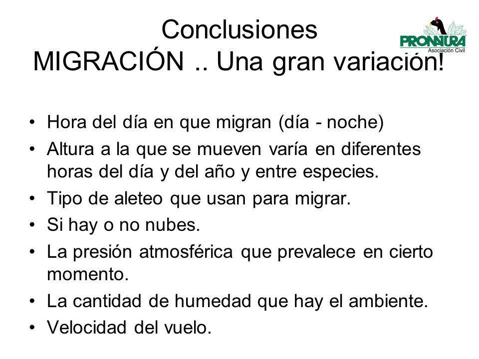 Conclusiones MIGRACIÓN..Una gran variación.