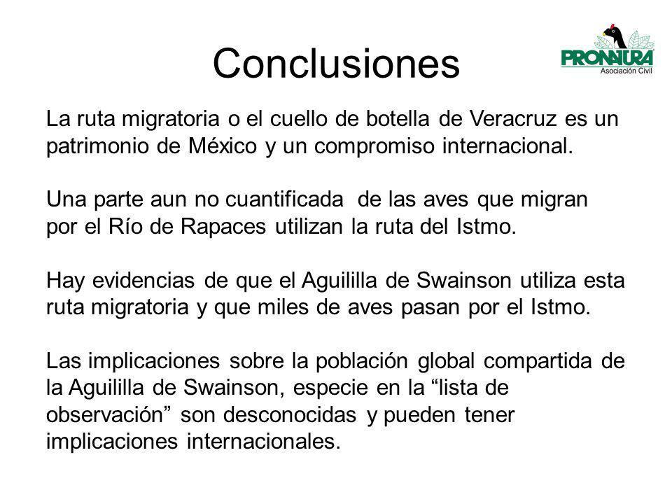 Conclusiones La ruta migratoria o el cuello de botella de Veracruz es un patrimonio de México y un compromiso internacional.