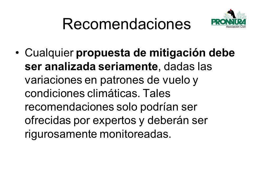 Recomendaciones Cualquier propuesta de mitigación debe ser analizada seriamente, dadas las variaciones en patrones de vuelo y condiciones climáticas.