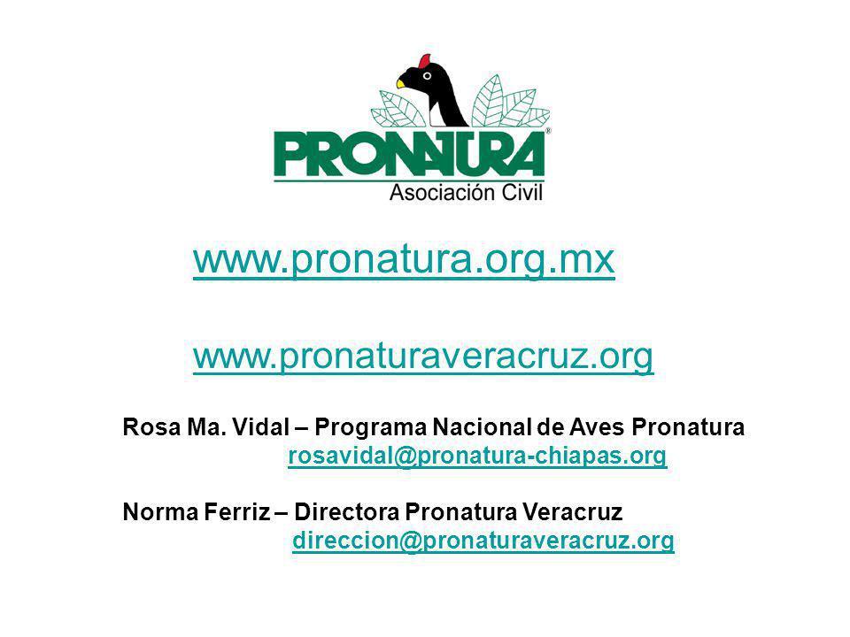 www.pronatura.org.mx www.pronaturaveracruz.org Rosa Ma.