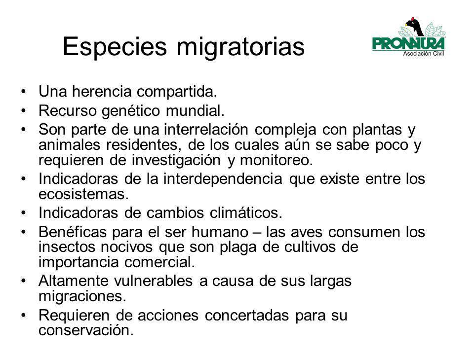 Especies migratorias Una herencia compartida.Recurso genético mundial.