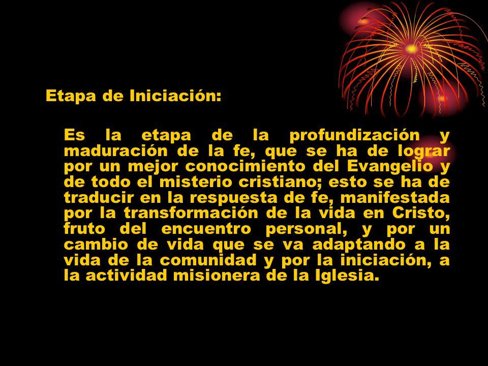 Etapa de Iniciación: Es la etapa de la profundización y maduración de la fe, que se ha de lograr por un mejor conocimiento del Evangelio y de todo el