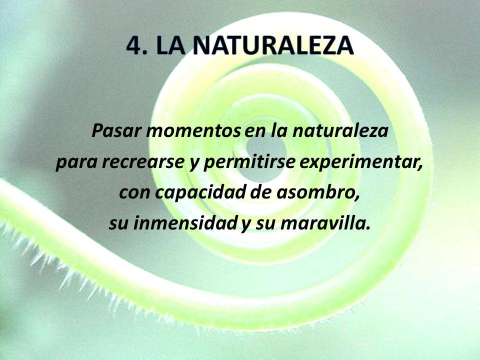 Pasar momentos en la naturaleza para recrearse y permitirse experimentar, con capacidad de asombro, su inmensidad y su maravilla.