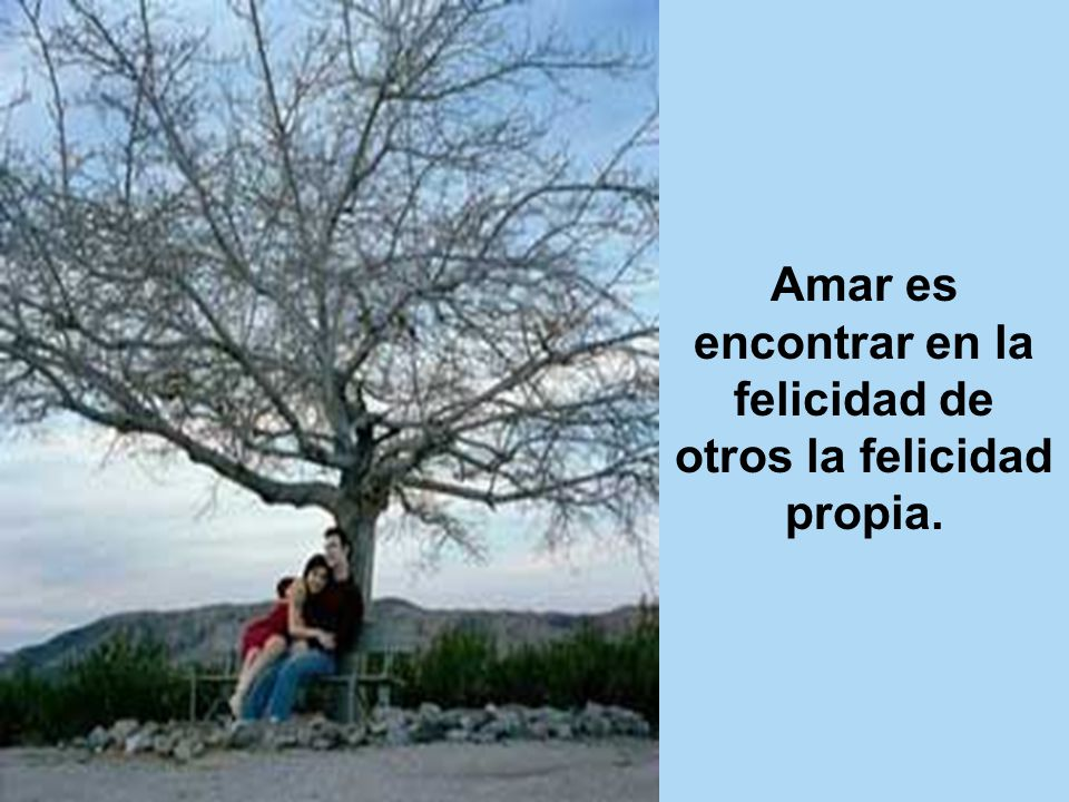 Frases Perfectas...