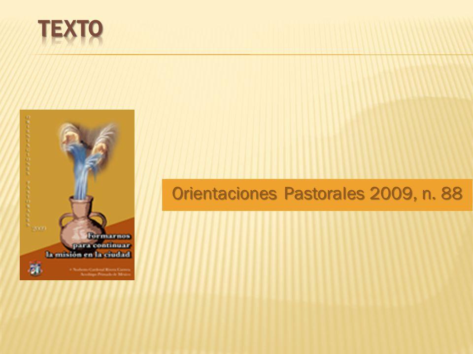 Orientaciones Pastorales 2009, n. 88