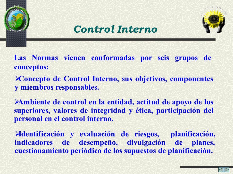 Control Interno Las Normas vienen conformadas por seis grupos de conceptos: Concepto de Control Interno, sus objetivos, componentes y miembros respons