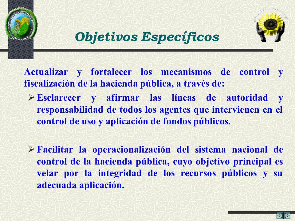 Actualizar y fortalecer los mecanismos de control y fiscalización de la hacienda pública, a través de: Esclarecer y afirmar las líneas de autoridad y