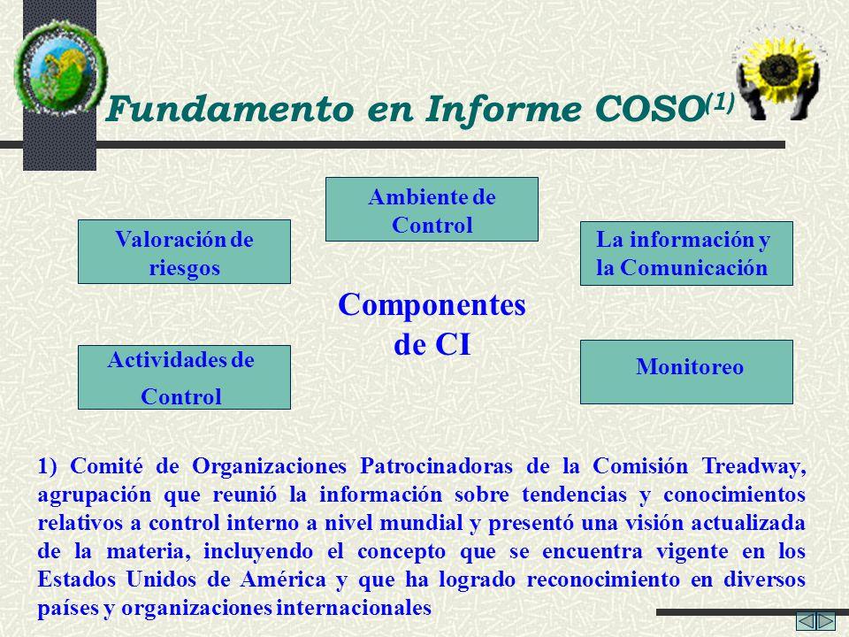 Fundamento en Informe COSO (1) 1) Comité de Organizaciones Patrocinadoras de la Comisión Treadway, agrupación que reunió la información sobre tendenci