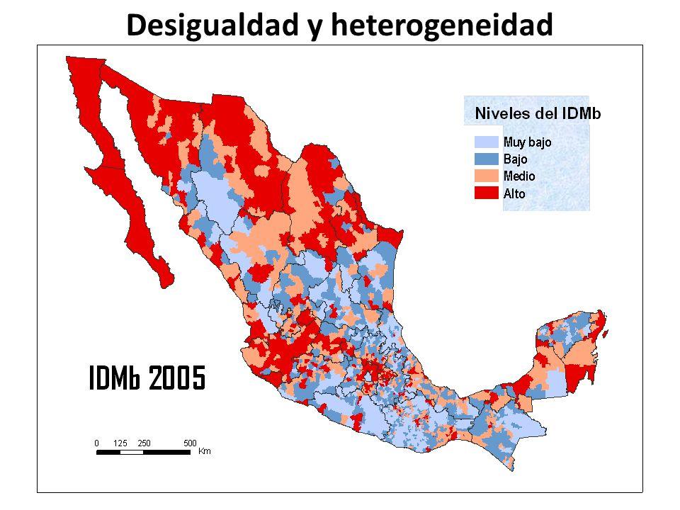 Desigualdad y heterogeneidad