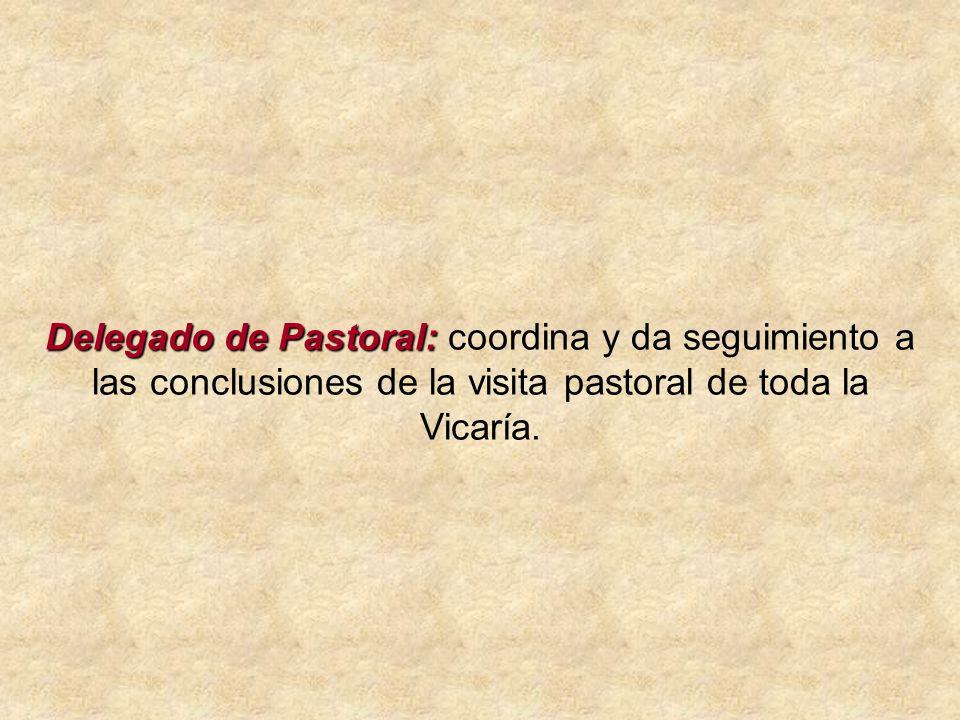 Delegado de Pastoral: Delegado de Pastoral: coordina y da seguimiento a las conclusiones de la visita pastoral de toda la Vicaría.