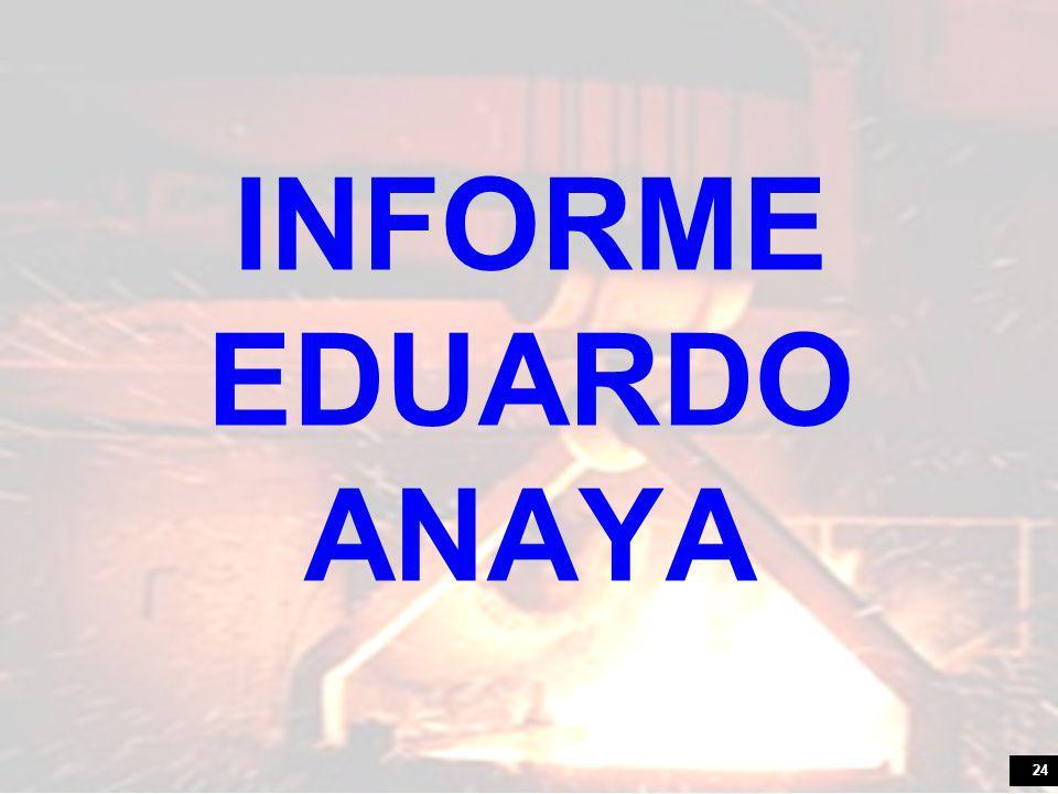 24 INFORME EDUARDO ANAYA