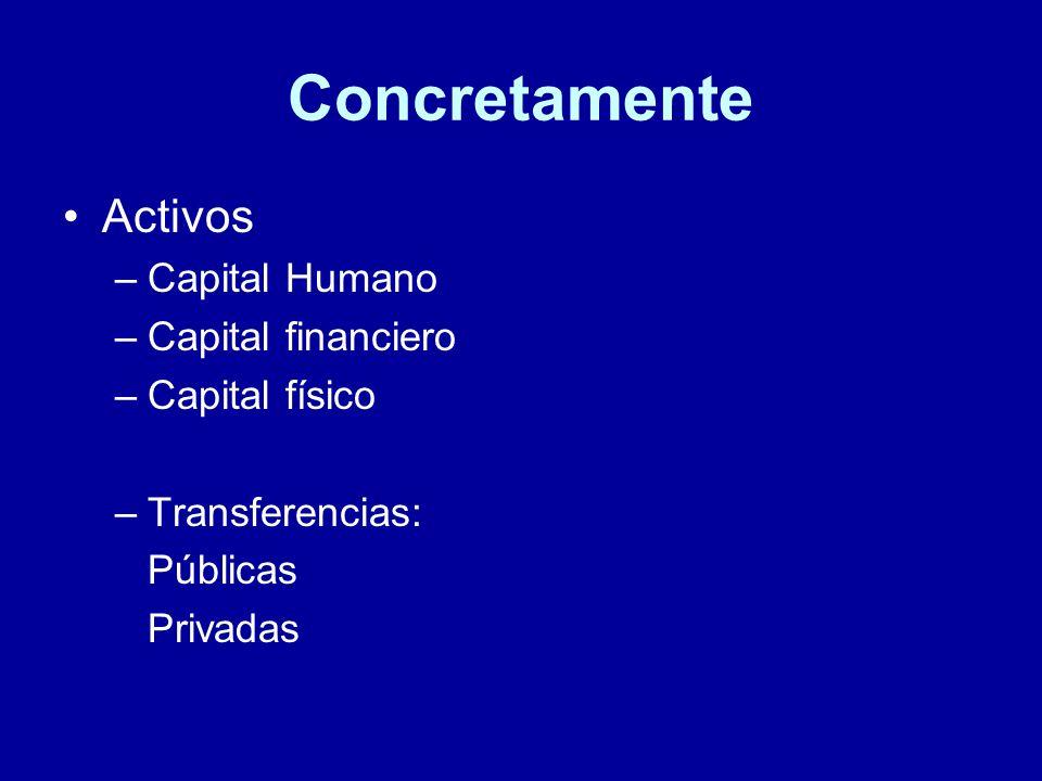 Concretamente Activos –Capital Humano –Capital financiero –Capital físico –Transferencias: Públicas Privadas